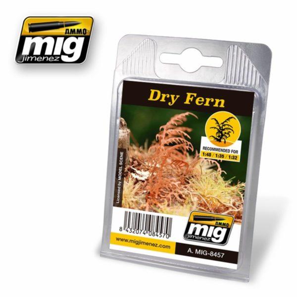 AMMO-Dry-Fern---Vertrockneter-Farn_0 - bigpandav.de