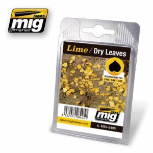 AMMO-Lime---Dry-Leaves-(vetrocknete-Lindenblaetter)_0 - bigpandav.de