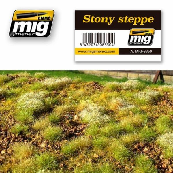 AMMO-Stony-steppe---Steppe-steinig_0 - bigpandav.de
