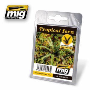AMMO-Tropical-Fern---Tropischer-Farn_0 - bigpandav.de